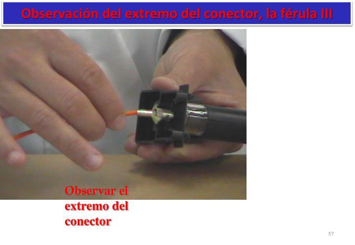 Observación del extremo del conector, la férula III