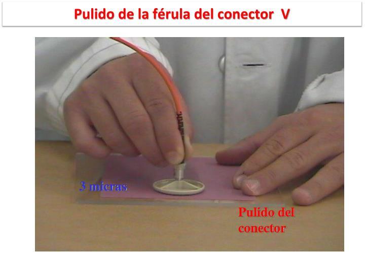 Pulido de la férula del conector  V