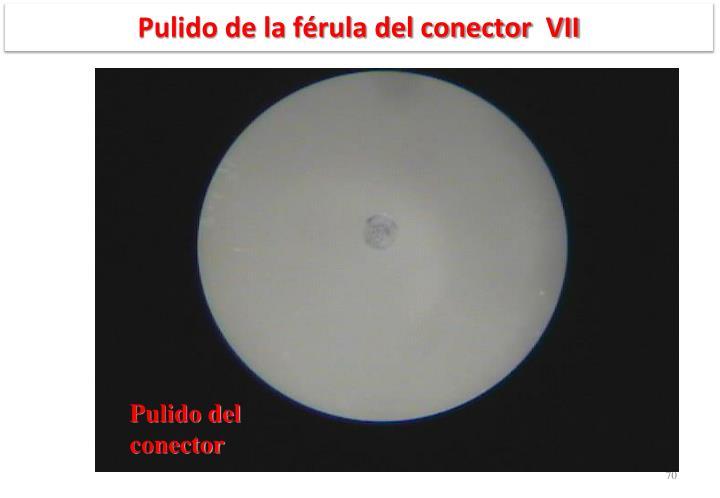 Pulido de la férula del conector  VII