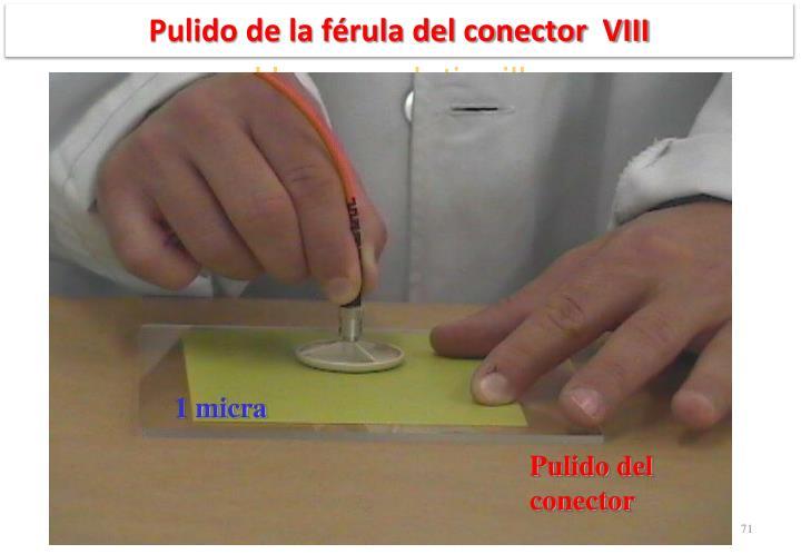 Pulido de la férula del conector  VIII