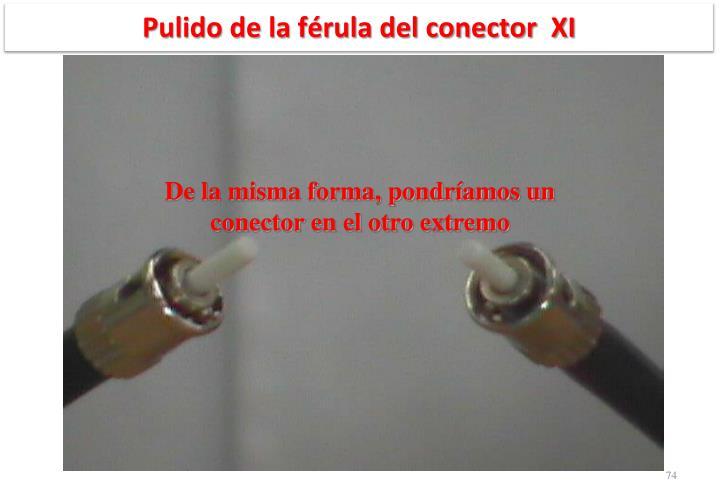 Pulido de la férula del conector  XI