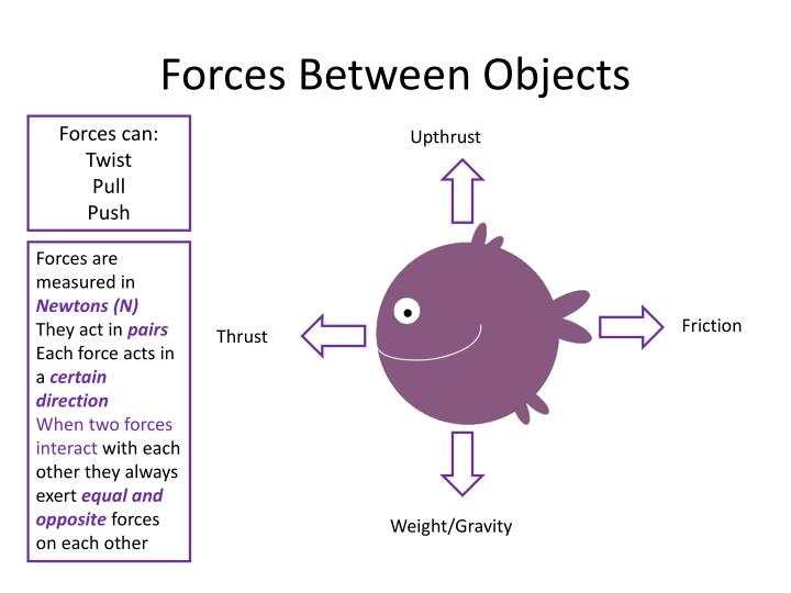 Forces Between Objects
