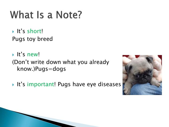 What Is a Note?