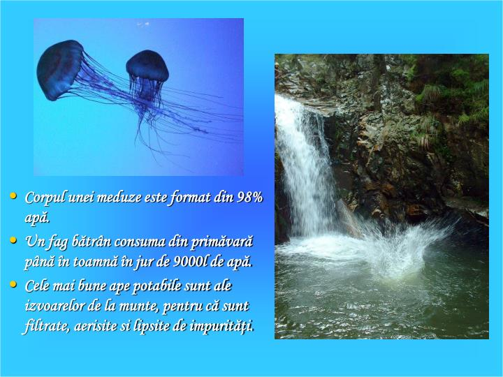 Corpul unei meduze este format din 98% ap.