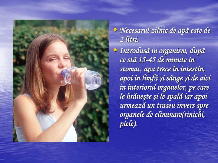 Necesarul zilnic de ap este de 2 litri.