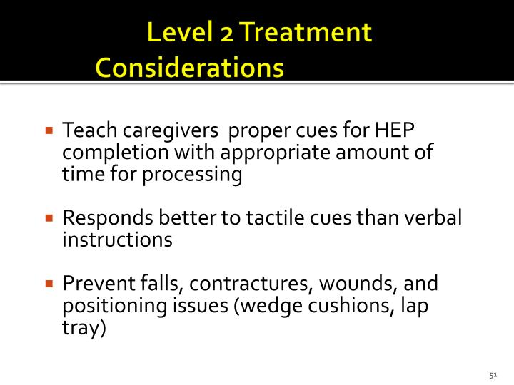 Level 2 Treatment Considerations