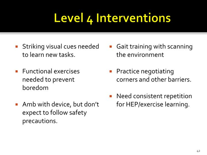 Level 4 Interventions