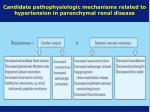 candidate pathophysiologic mechanisms related to hypertension in parenchymal renal disease