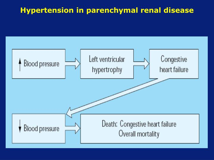 Hypertension in parenchymal renal disease