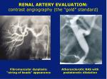 renal artery evaluation contrast angiography the gold standard