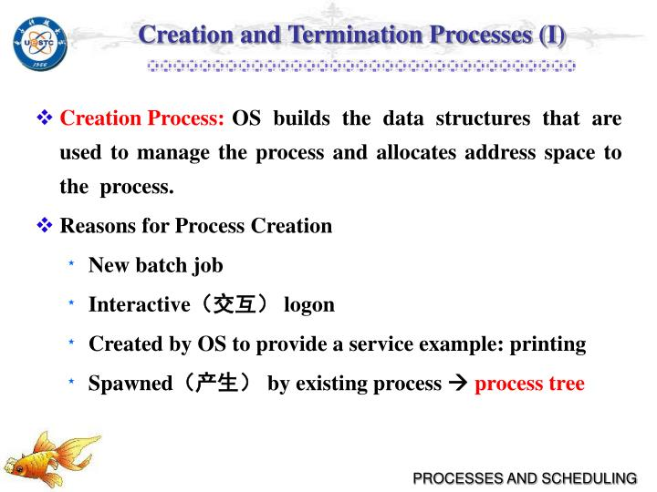 Creation and Termination Processes (I)