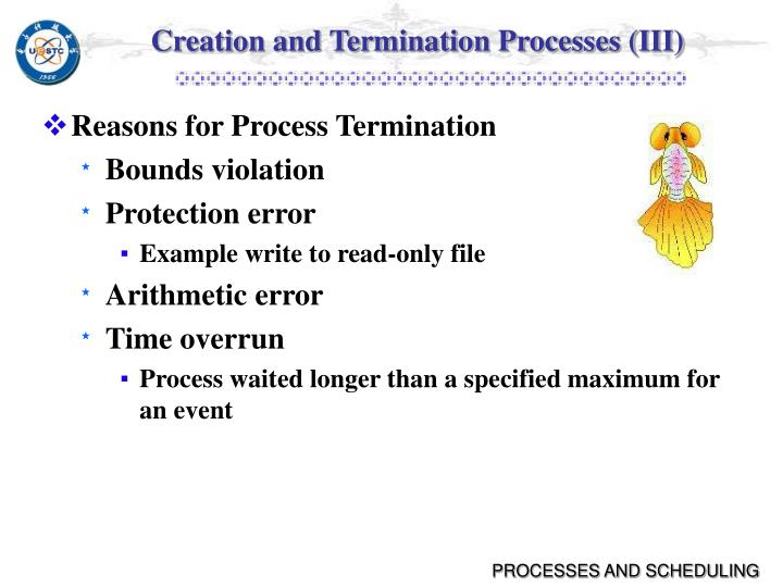 Creation and Termination Processes (III)