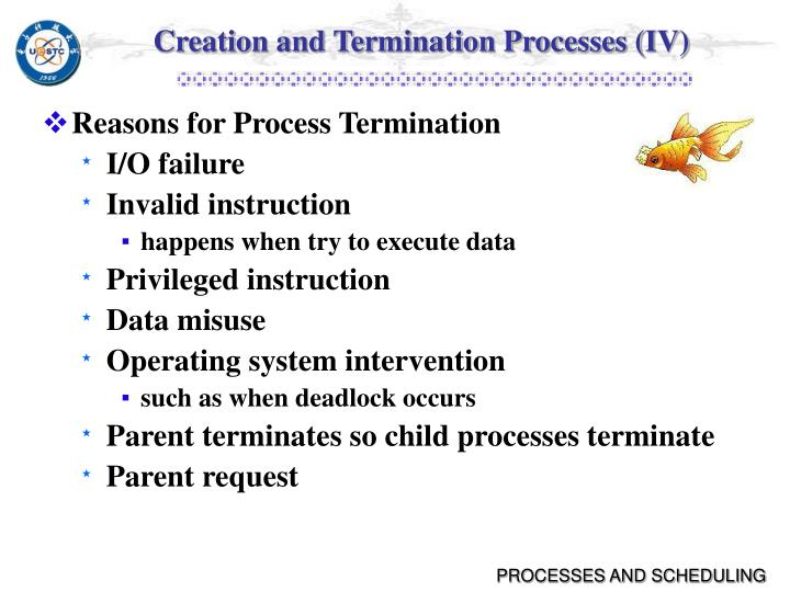 Creation and Termination Processes (IV)