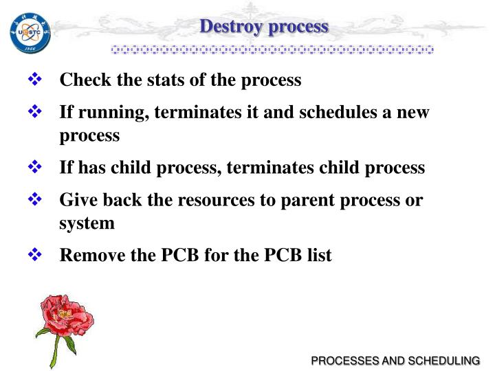 Destroy process