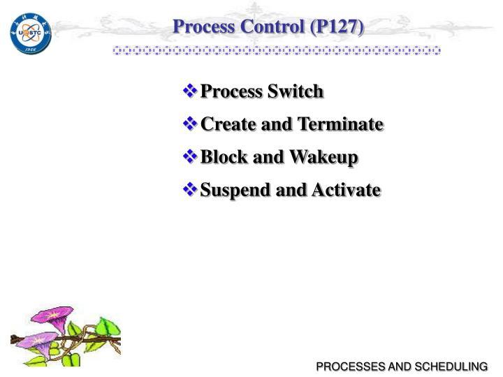 Process Control (P127)