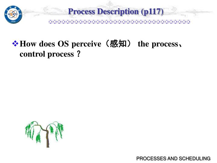 Process Description (p117)