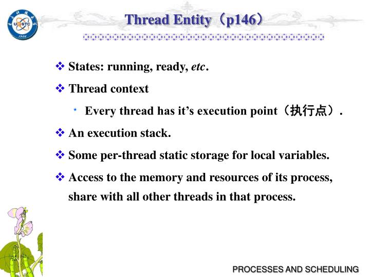 Thread Entity