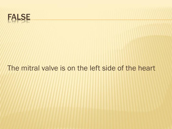 The mitral valve is on the left side of the heart