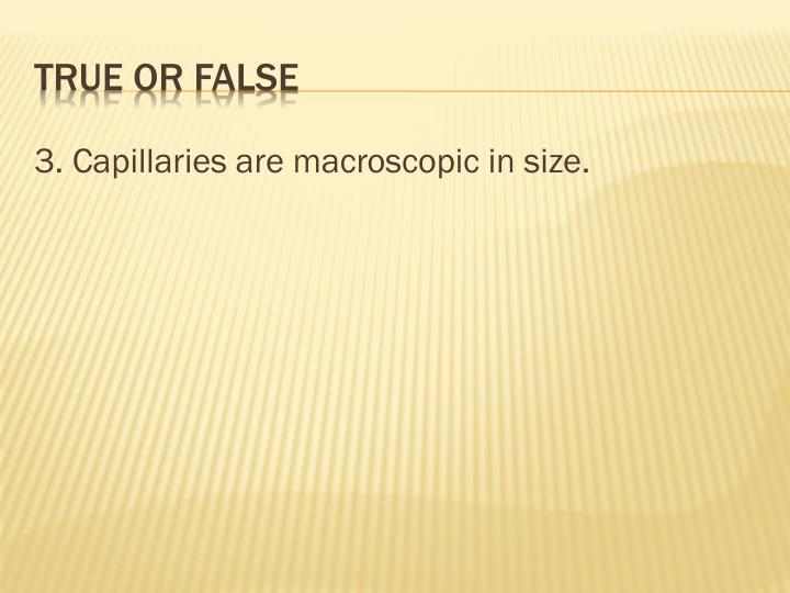 3. Capillaries are macroscopic in size.