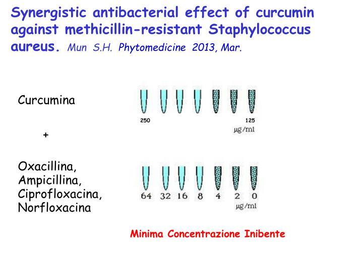 Synergistic antibacterial effect of curcumin against methicillin-resistant Staphylococcus aureus.