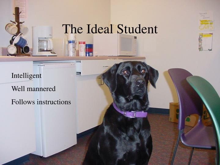 The Ideal Student
