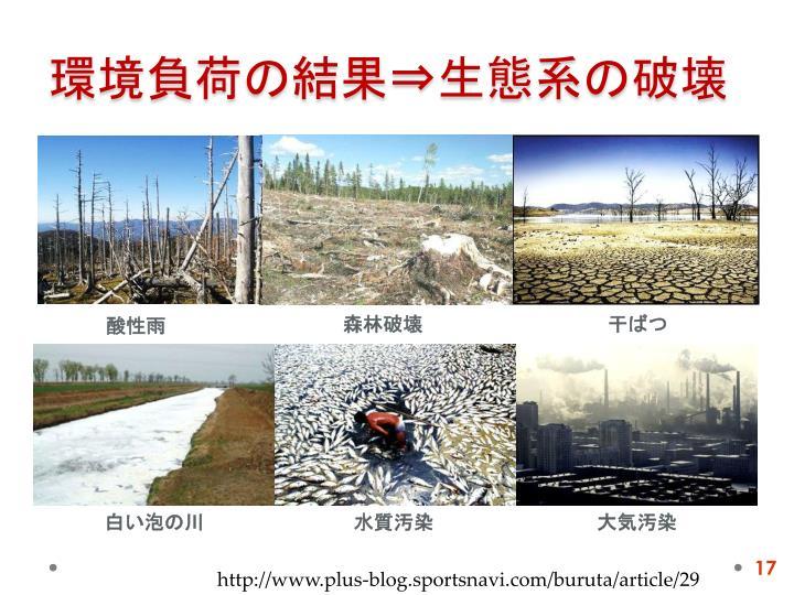環境負荷の結果⇒生態系の破壊