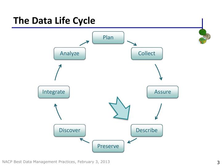 The data life cycle