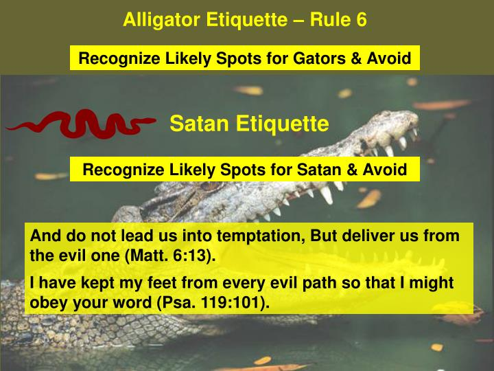 Alligator Etiquette – Rule 6