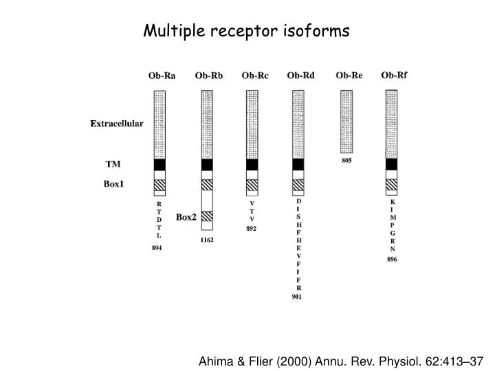 Multiple receptor isoforms