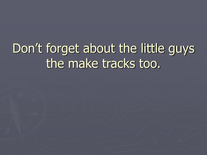 Don't forget about the little guys the make tracks too.