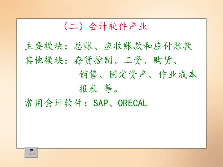 (二)会计软件产业