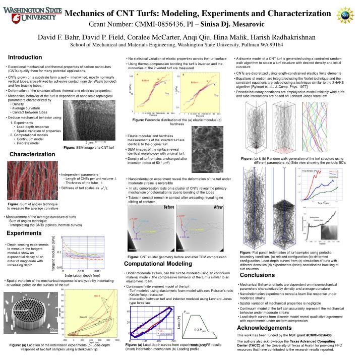 Mechanics of cnt turfs modeling experiments and characterization