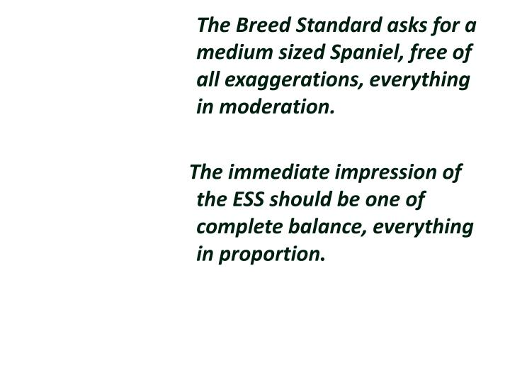 The Breed Standard asks for a medium sized Spaniel, free of all exaggerations, everything in moderat...