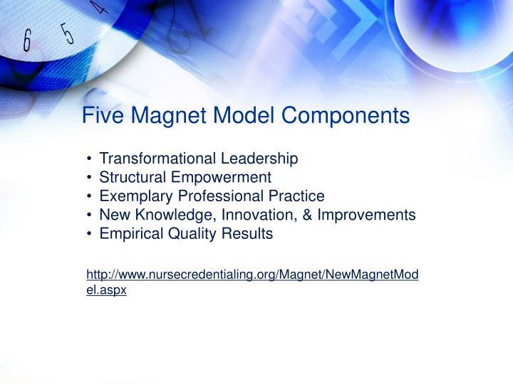 Five Magnet Model Components