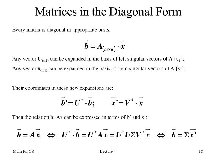 Matrices in the Diagonal Form