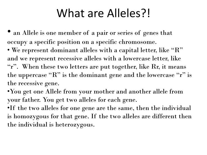 What are Alleles?!