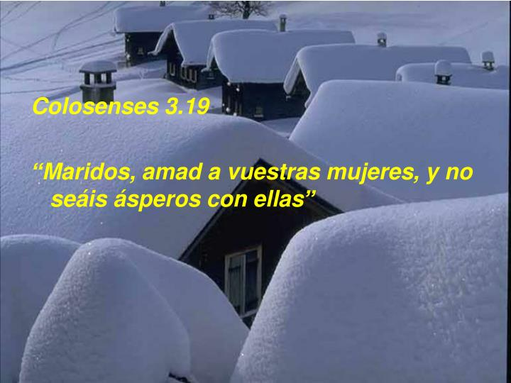 Colosenses 3.19