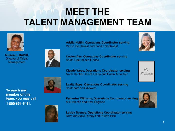 Meet the talent management team