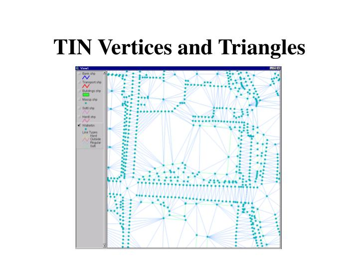 TIN Vertices and Triangles