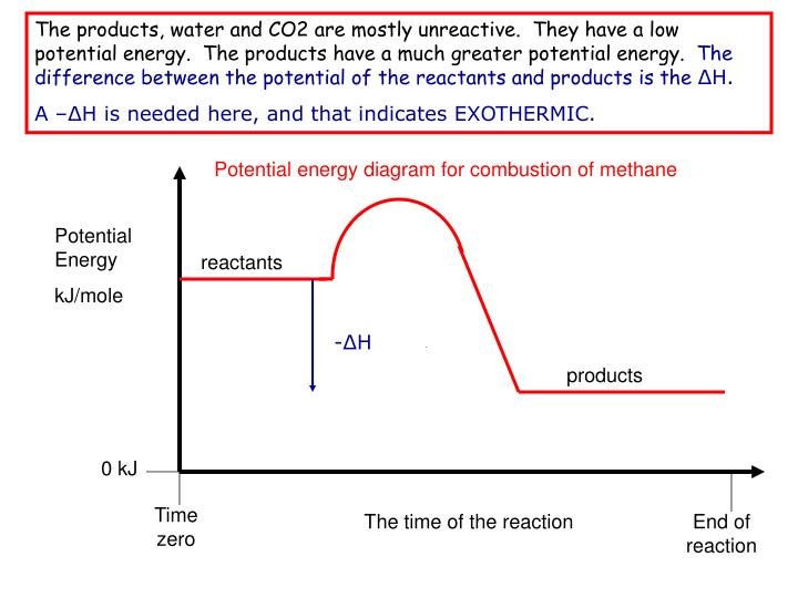 The products, water and CO2 are mostly unreactive.  They have a low potential energy.  The products have a much greater potential energy.