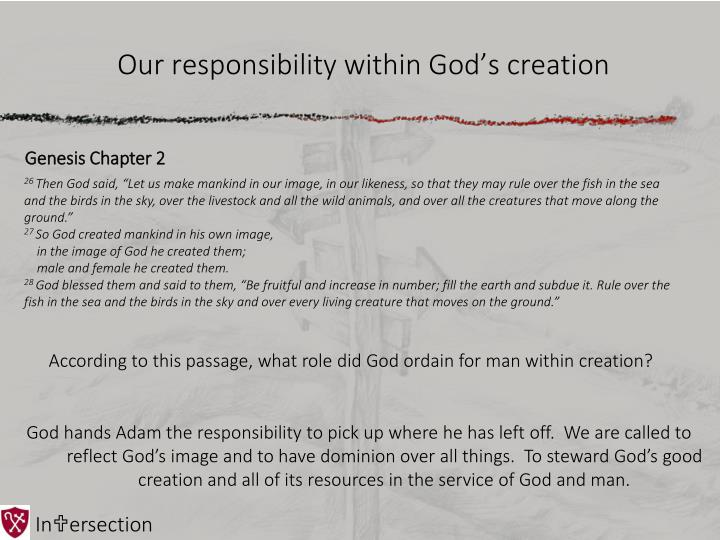 Our responsibility within God's creation