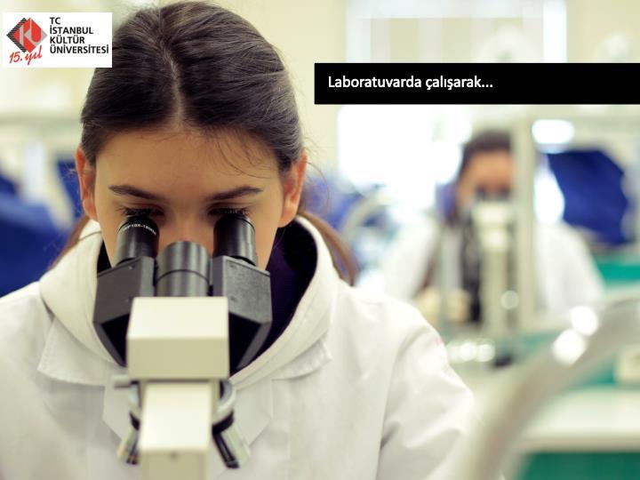 Laboratuvarda çalışarak...