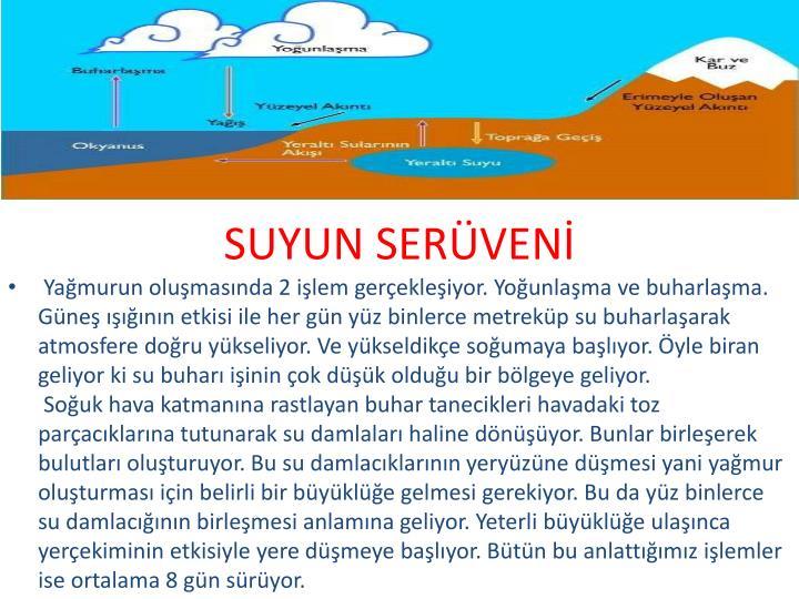 SUYUN SERVEN