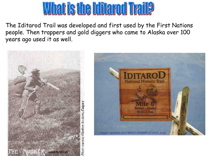What is the Iditarod Trail?