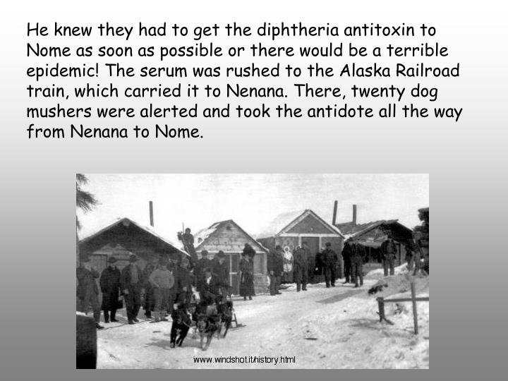 He knew they had to get the diphtheria antitoxin to Nome as soon as possible or there would be a terrible epidemic! The serum was rushed to the Alaska Railroad train, which carried it to Nenana. There, twenty dog mushers were alerted and took the antidote all the way from Nenana to Nome.