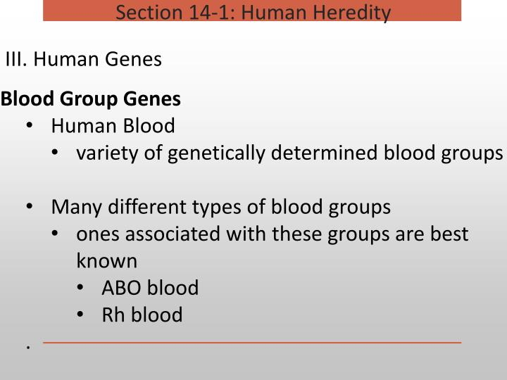 Section 14-1: Human Heredity