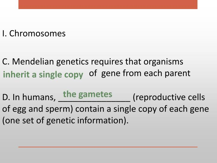 I. Chromosomes
