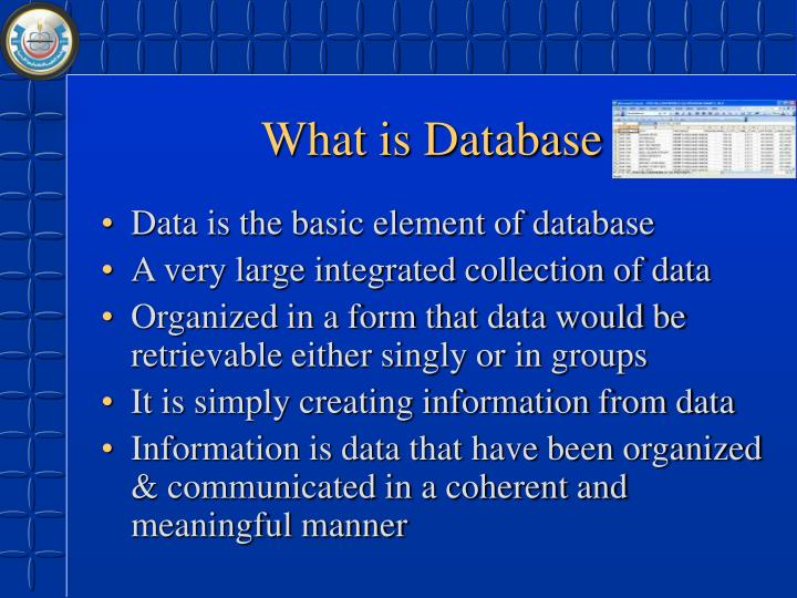 What is Database