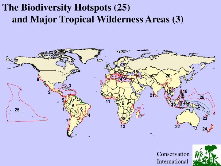 The Biodiversity Hotspots (25)