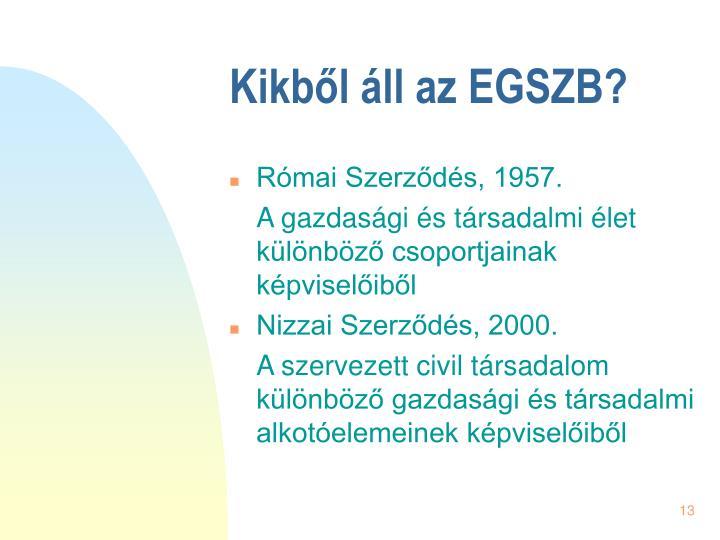 Kikből áll az EGSZB?